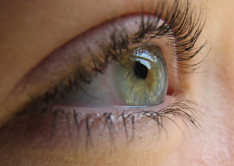 Sunny-eyes-012b