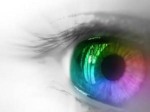 Vision1-300x225
