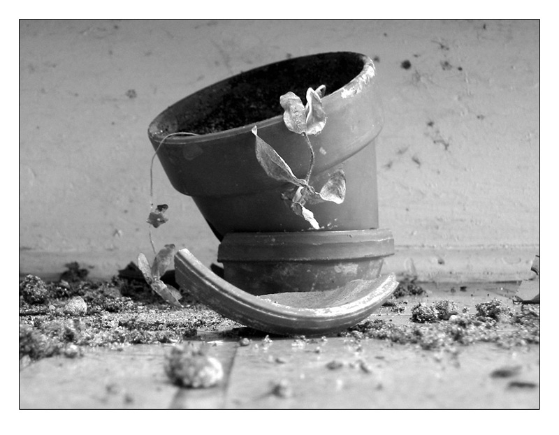 Broken_pot