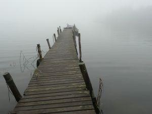 Embracing-uncertainty